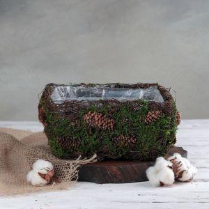 Кашпо плетёное квадратное «Лесная сказка», 20?20?10 см