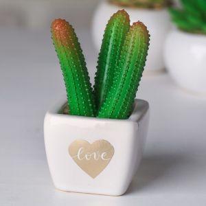 Суккулент в керамическом горшочке Love, 10.5 ? 5.5 ? 6 см