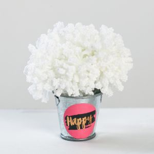 Цветочный комплимент «Счастье», 5 ? 7 ? 5 см