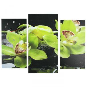 Часы настенные модульные «Зелёные орхидеи на камнях», 60 ? 80 см