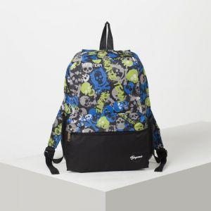Рюкзак молодёжный, отдел на молнии, 2 наружных кармана, 2 боковые сетки, цвет чёрный