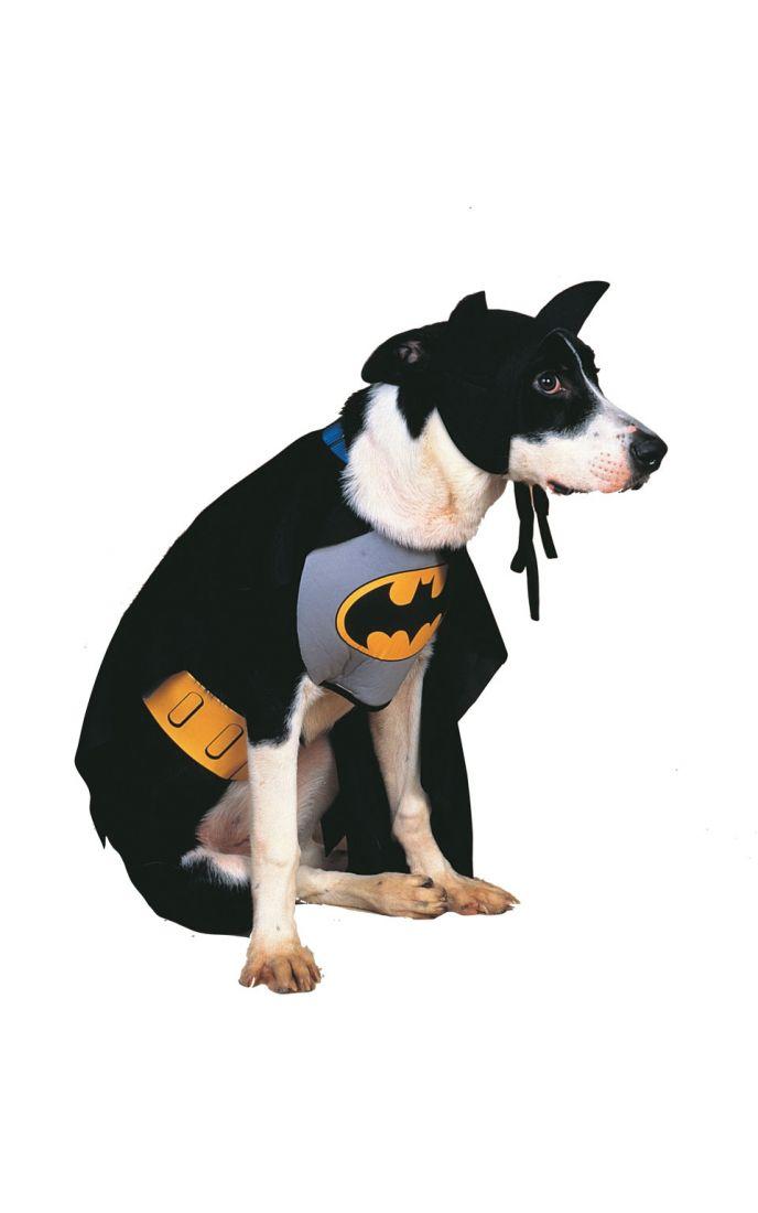 Костюм Бэтмена для собаки