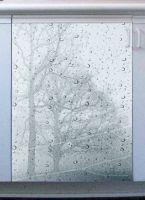 Наклейка на посудомоечную машину  - ветер и дождь