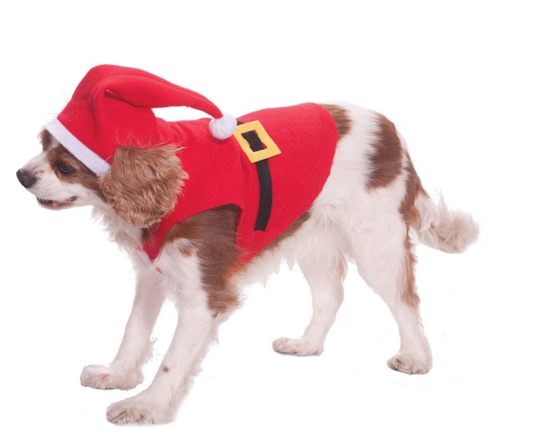Костюм для собаки Санта