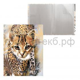 Папка 20 конвертов ErichKrause Wild Cat 48688