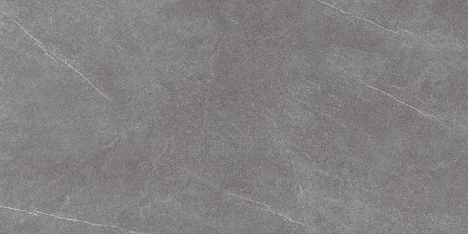DL590500R | Роверелла пепельный обрезной