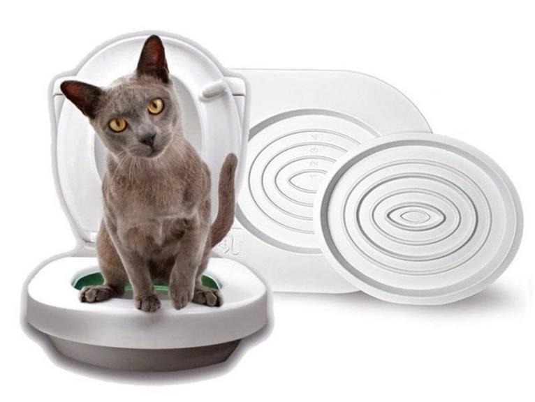 Система приучения кошек к туалету CitiKitty