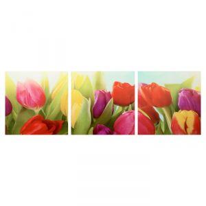 """Модульная картина """"Тюльпаны"""" (3-35х35) 35х105 см 4983619"""