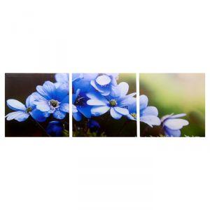 """Модульная картина """"Цветы рассвета"""" (3-35х35) 35х105 см 4983626"""