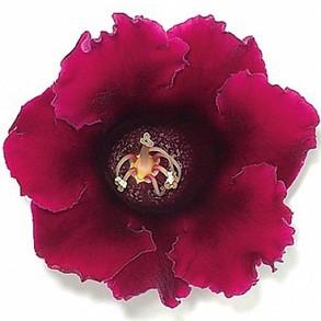 Глоксиния гибридная F1 Empress Wine Red. Пакет - 5 семян