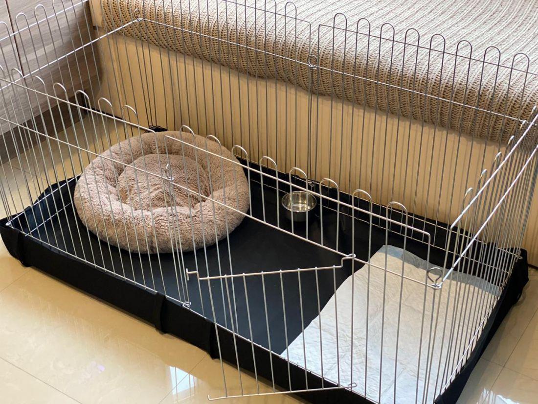 Вольер для собак кошек щенков с Дном 6х64х63 прямоугольный
