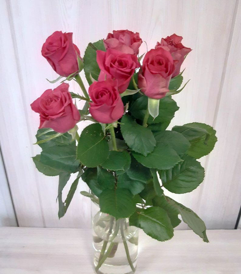 7 малиновых роз (60 см)
