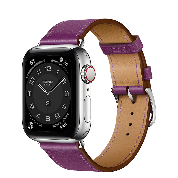 Apple Watch Hermes Series 6 40mm Stainless Steel GPS + Cellular Anémone Leather Single Tour