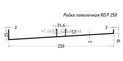 RD.P 250 Рейка потолочная (6,0) RAL