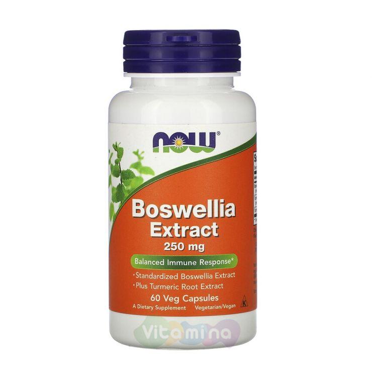Now Foods Экстракт Босвеллии Boswellia Extract, 60 капсул