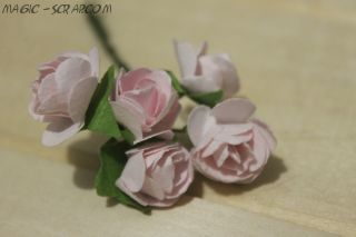 """Розы """"Розовая безмятежность"""" (5 шт)"""