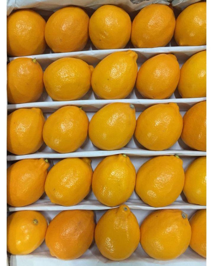 Лимон узбекский 6 кг