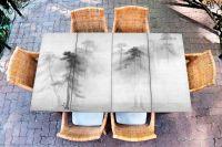 Наклейка на стол - Сосновый лес | Купить фотопечать на стол в магазине Интерьерные наклейки