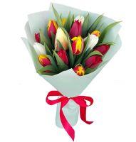 Тюльпаны 25 шт (микс)