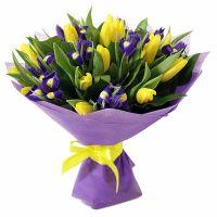 Ирисы и желтые тюльпаны