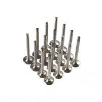 RK07038 * 2112-1007010 * Клапаны облегченные для а/м 2110 - 2112 (16 кл. дв., компл. 16 шт.)