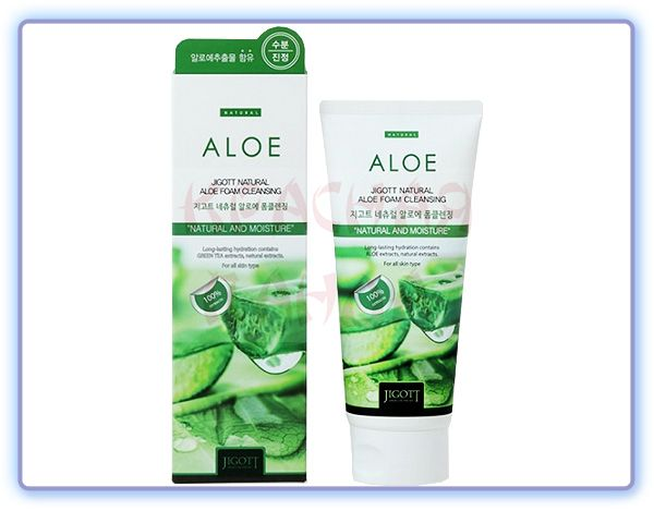 Jigott Natural Aloe Foam Cleansing