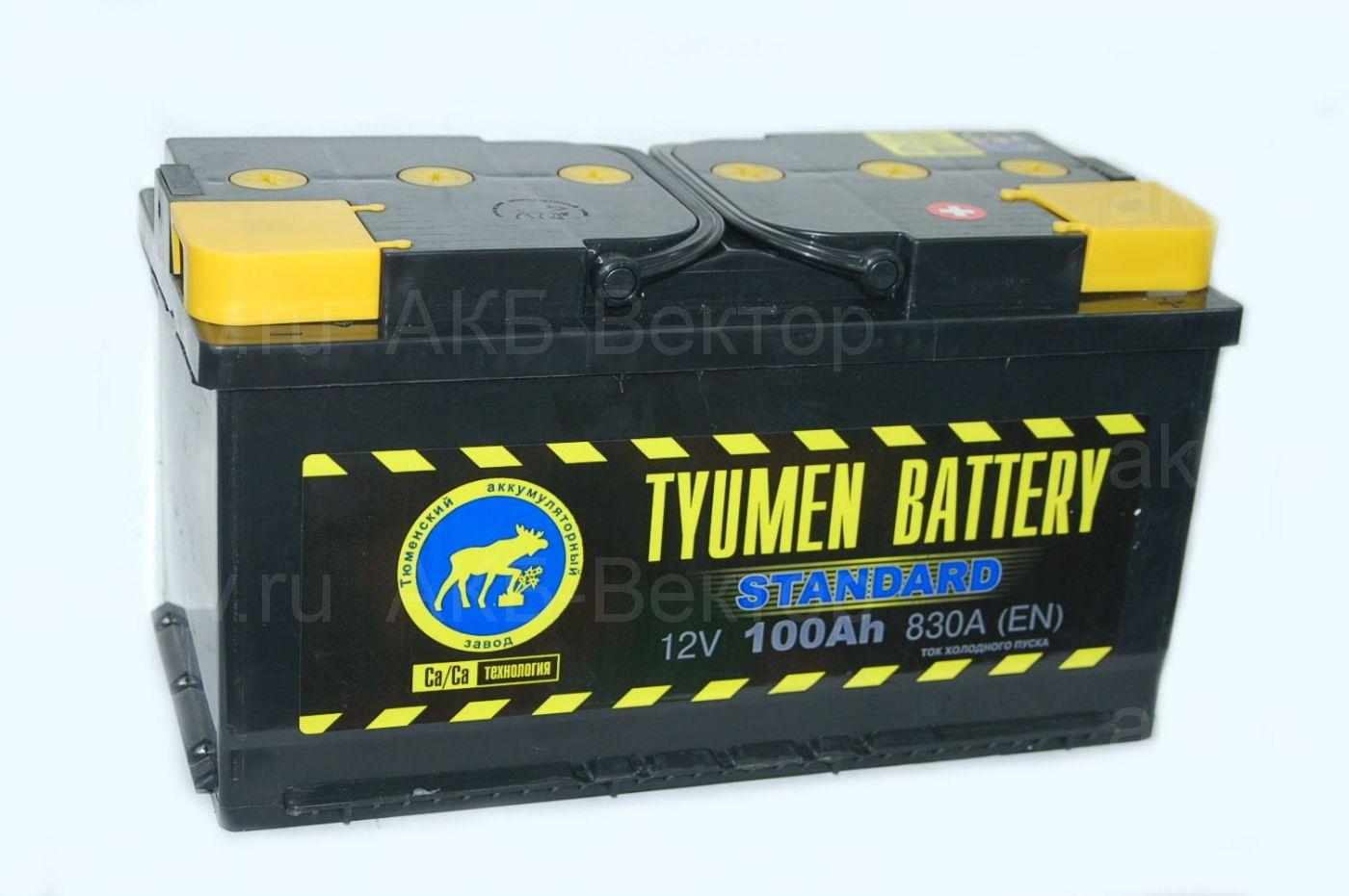 Tyumen Standart  100Ач 830А(EN)