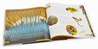 Книга знаний «Невидимый мир» - вид сверху
