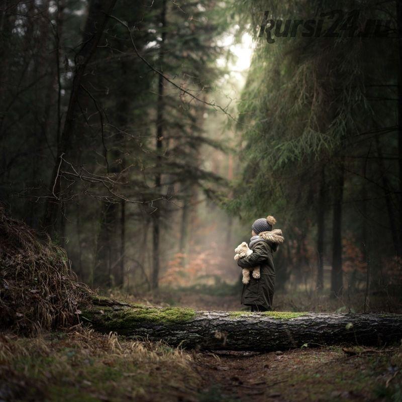 Into the forest (Iwona Podlasi?ska) на английском