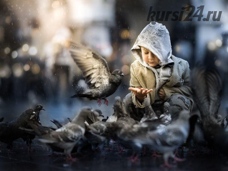 Pigeons… (Iwona Podlasi?ska) на английском