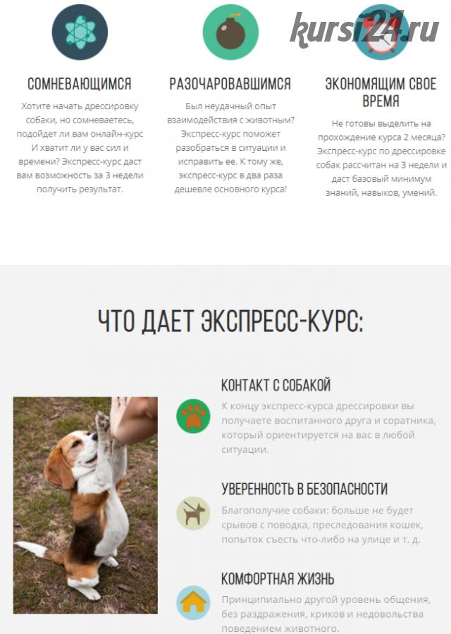 [kinologschool] Воспитанная собака за 3 недели (Антонина Зимарева)