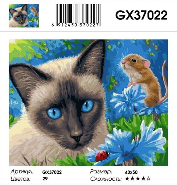 Картина по номерам на подрамнике GХ37022