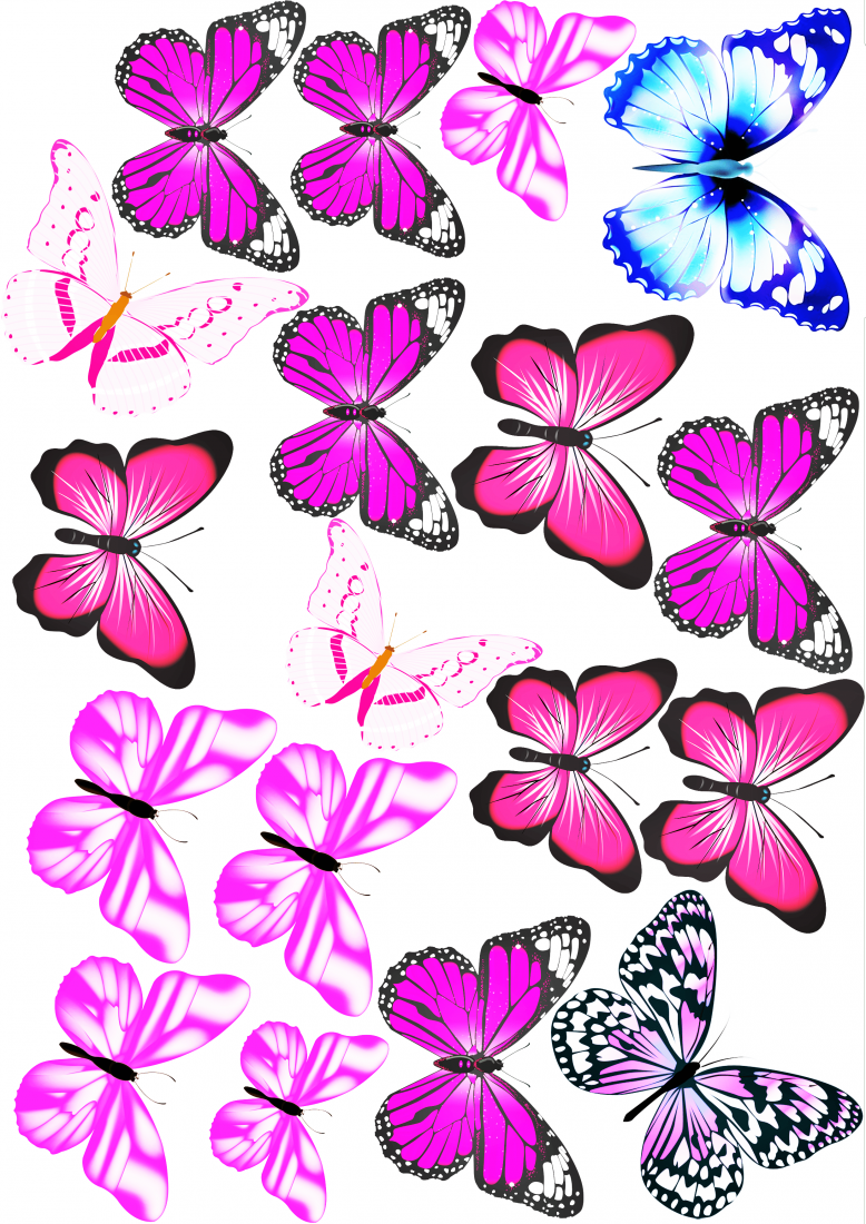 Вафельная картинка Бабочки  (11)