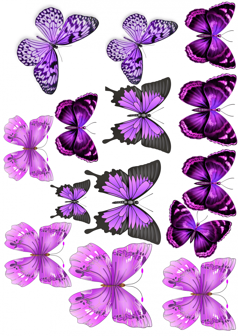 Вафельная картинка Бабочки  (12)