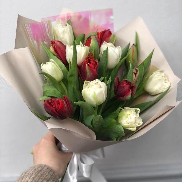15 пионовидных тюльпанов в упаковке