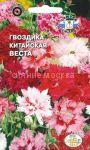 Gvozdika-kitajskaya-Vesta-SeDek