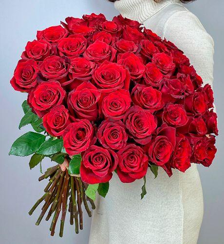Розы красные Эквадор