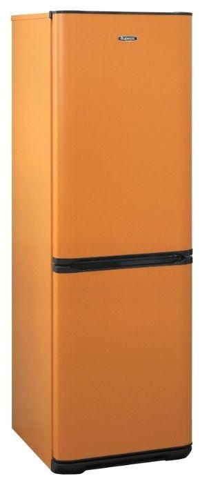 Холодильник Бирюса T320NF Оранжевый