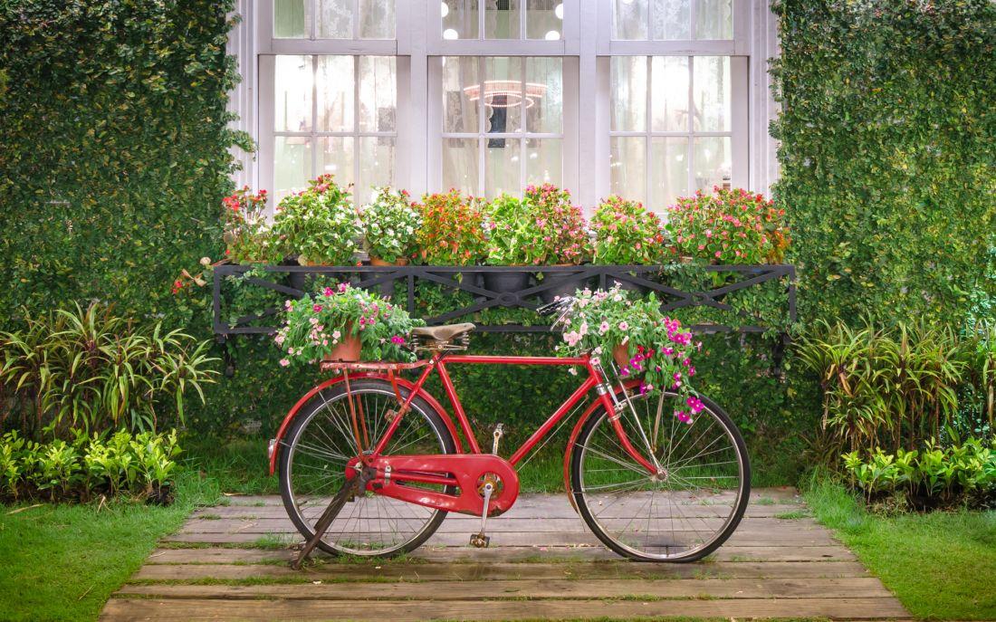 Велосипед у окна 12-010