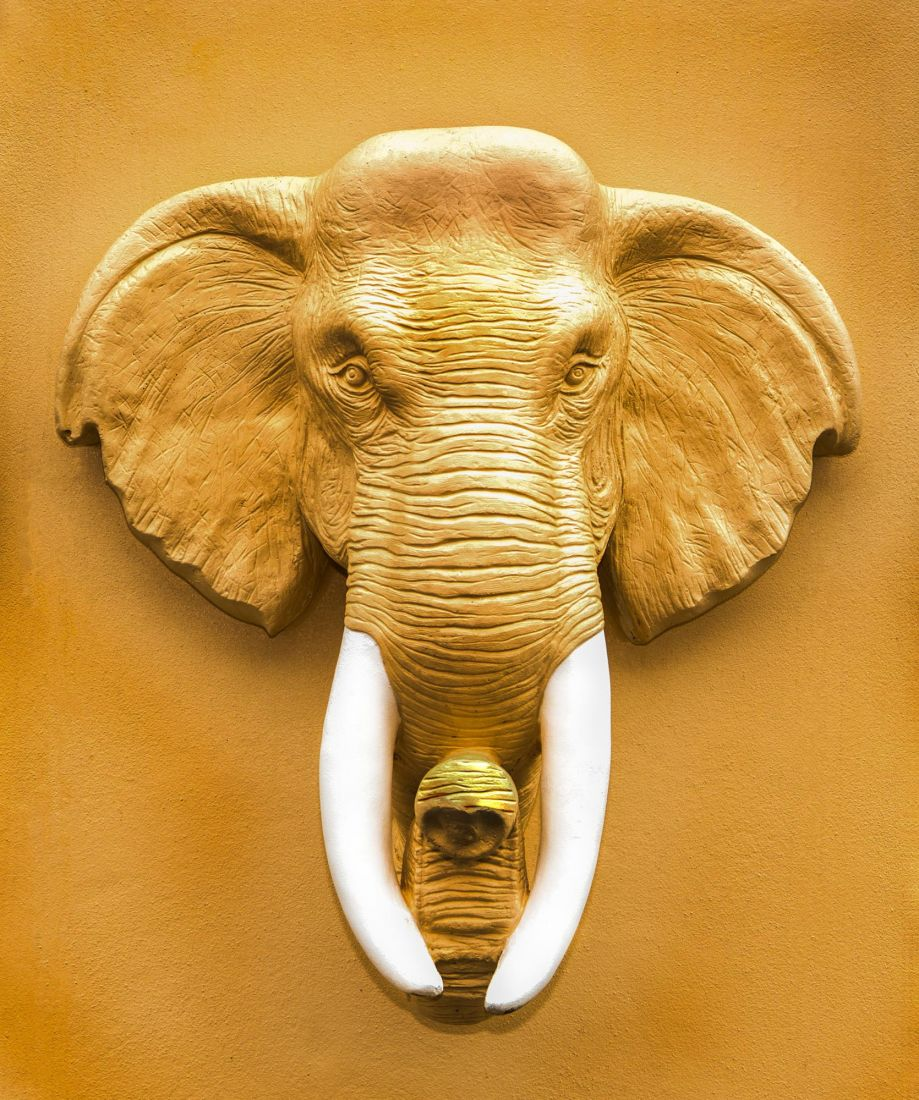 Слон 3-158
