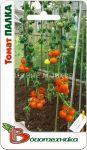 Tomat-Palka-Biotehnika