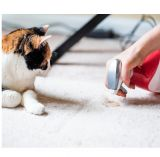 Xanto Whoops Pet Stain 600 мл Средство для удаления запаха