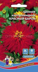 Цинния кактусовидная Красный Барон (Уральский Дачник)