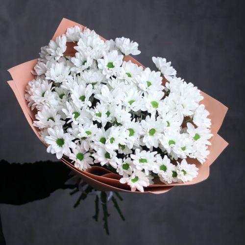 """11 веток хризантемы """"Ромашка"""""""