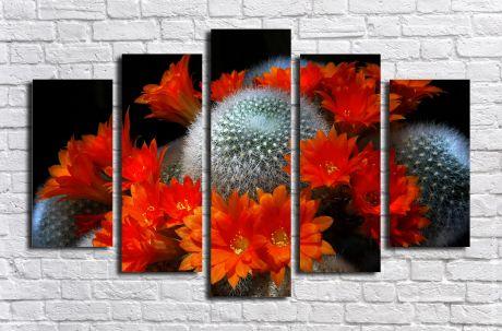 Модульная картина Кактус цветущий