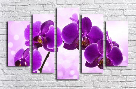 Модульная картина Цветение фиолетовой орхидеи