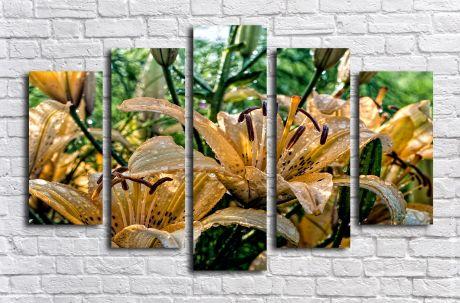 Модульная картина Бежевые лилии