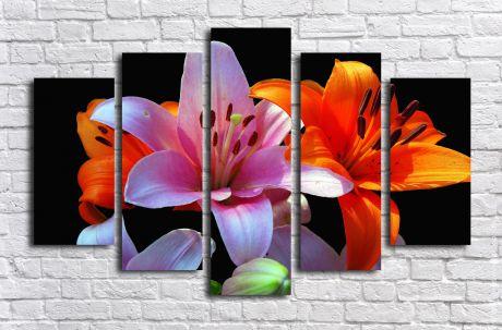 Модульная картина Разноцветные лилии