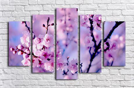 Модульная картина Сакура в цвету