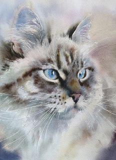 Postcard Watercolor cats 2